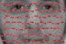 Китайский фотограф Хи Бо (He Bo) говорит, что его интересуют повествовательные отношения между изображением и текстом, коммуникационные барьеры в контексте катастрофы и фиктивная природа памяти.   Он использует изображения из прессы и соцсетей, чтобы составлять портреты террористов и их жертв. Каждая работа состоит из большого количества маленьких изображений, в основном он использует фотографии террористов и снимки с места терактов. Красный цвет помогает Бо дать голос тем, кого больше нет: линии — это послания на азбуке Морзе.  Представленная работа посвящена терактам в Брюсселе. В 2016 году там произошли взрывы в аэропорту и метрополитене. 38 человек (включая троих террористов) погибли, более 340 были ранены. Ответственность за произошедшее взяла на себя запрещенная в России террористическая организация ИГ («Исламское государство»).