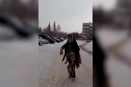Россияне призвали шамана на помощь в строительстве парковки