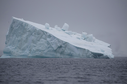Антарктида побила абсолютный рекорд температуры