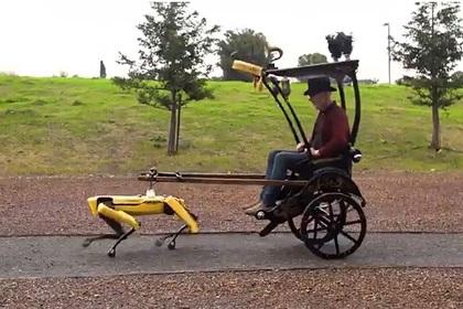 Бывший «разрушитель легенд» запряг робособаку в рикшу и прокатился на ней