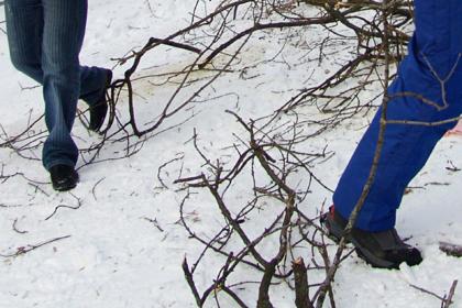 Дети не выдержали издевательств и сбежали от усыновивших их для работы россиян
