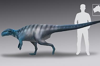 Решена полувековая загадка о динозаврах