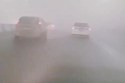 Шнуров написал матерное стихотворение о затянутом дымом российском городе