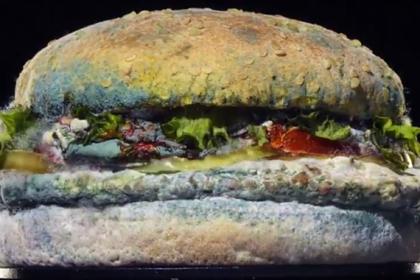 Бургер с плесенью вызвал отвращение у любителей фастфуда