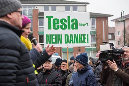 Tesla разрешили вырубить лес в Европе ради скандального завода