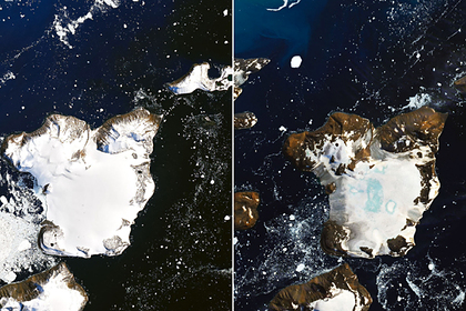 В Антарктиде зафиксировали катастрофическое таяние льда