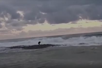Появилось видео исчезновения двух детей в Черном море