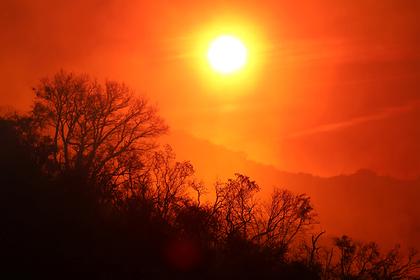Названа опасность жары для размножения людей