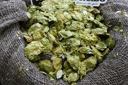 Российские пивовары попросили пересмотреть состав пива