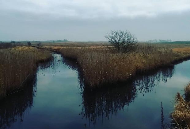 Озера вблизи хутора Молетай (Литва)