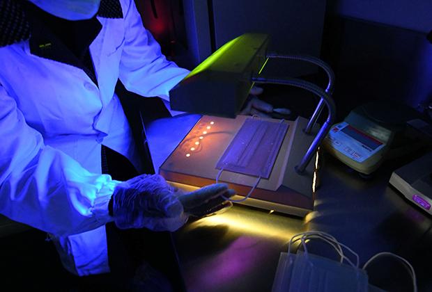 Дезинфекция маски ультрафиолетом. Китай, март 2020 года