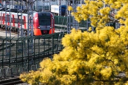 Власти российского региона предложили сохранить дорогу по побережью для поездов