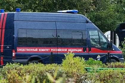 На обочине российской дороги нашли человеческую голову
