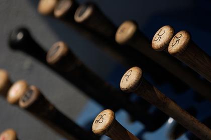 В России подскочили продажи бейсбольных бит и патронов