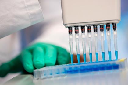 Ученые впервые остановили старение клеток