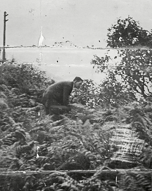 Поиски останков Мейми Стюарт в июле 1920 года