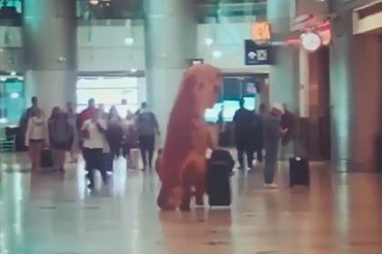 Пассажир нарядился в динозавра и явился в аэропорт вопреки пандемии коронавируса