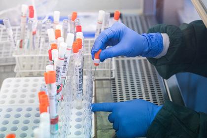 В России рассказали о разработке трех препаратов для лечения коронавируса