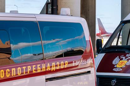В России задержали рейс из-за чихнувшего пассажира