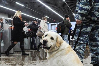 В Петербурге временно закроют девять станций метро