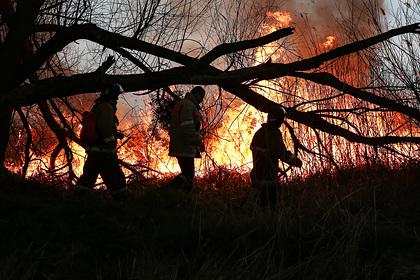 Российские спасатели нашли нелегальный склад боеприпасов при тушении пожара
