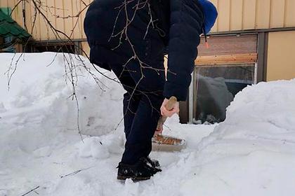 Российского пенсионера замуровало дома снегом