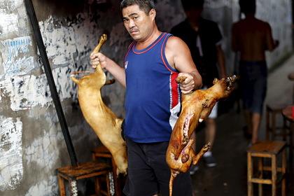 В Китае впервые запретили есть собак и кошек