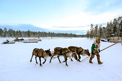 Российские власти поддержат традиционную хозяйственную деятельность в Арктике