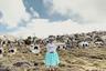 Бразильянка Луиза Дорр (Luisa Drr) рассказывает о боливийских женщинах-борцах. Серия работ «Летающие чолитас» посвящена одной из самых маргинализированных групп в стране. Чолитас стали символом борьбы за гражданские права и эмансипацию женщин. Они борются не только как рестлеры— на ринге, но и за его пределами, стараясь заработать на жизнь.