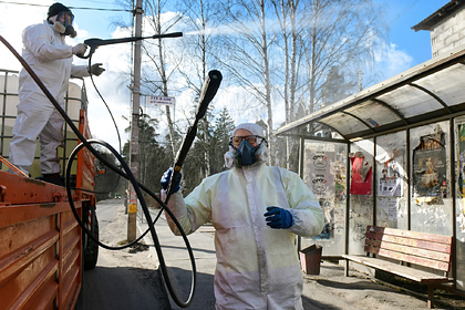 Раскрыты методы борьбы с коронавирусом в российских регионах