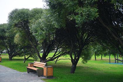 Под Ростовом-на-Дону появится новый парк