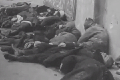 Возбуждено уголовное дело о геноциде в Ростовской области во время войны photo