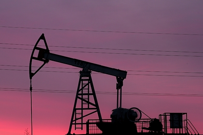 Эксперт назвал факторы победы России в переговорах по нефти