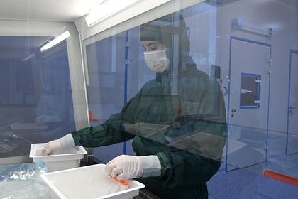 Доброволец описал процедуру тестирования вакцины от вирусов на людях