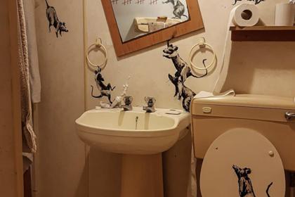 Бэнкси нарисовал картину в туалете о самоизоляции