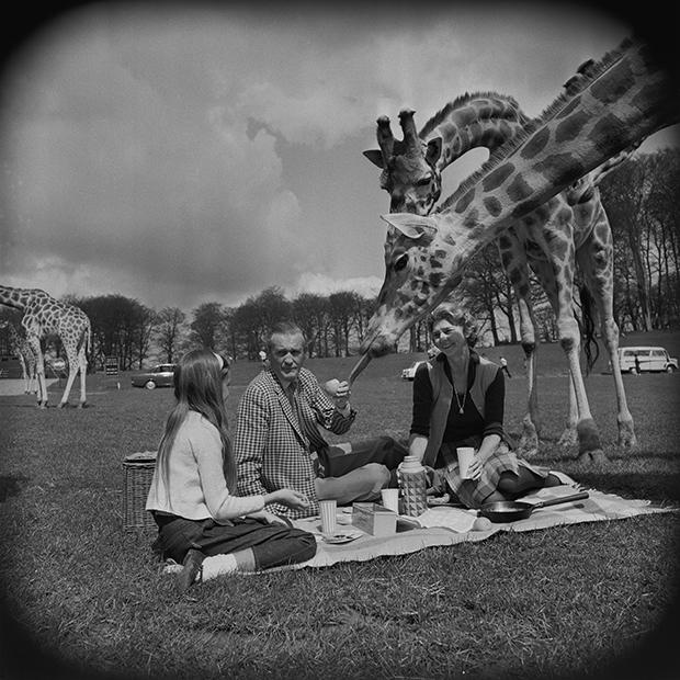 Генри Тинн (в центре) со второй женой, дочерью и жирафами, 1969 год