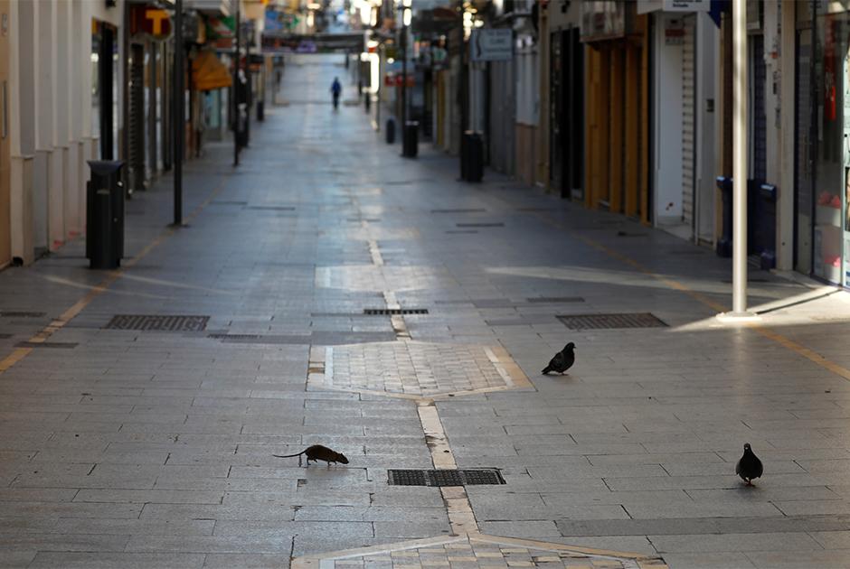 Пустые улицы города Ронда, Испания