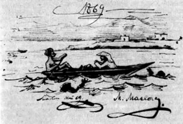 Иллюстрация на заглавном листе рукописи «Заметки о фауне губок Красного моря»