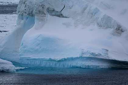 Описано влияние глобального потепления на появление неизвестных вирусов