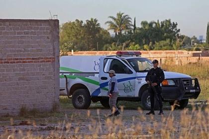 Массовое захоронение людей обнаружили на мексиканской ферме
