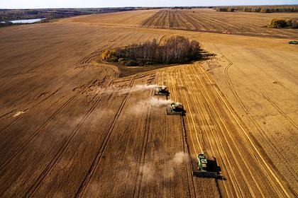 Минсельхоз США оценил лидерство России по экспорту пшеницы