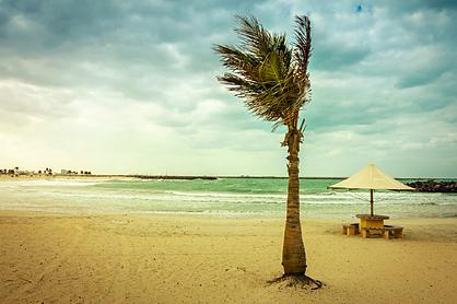 Туриста арестовали за публикацию фотографий с пляжа