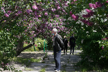 На Украине назвали дату окончания карантина