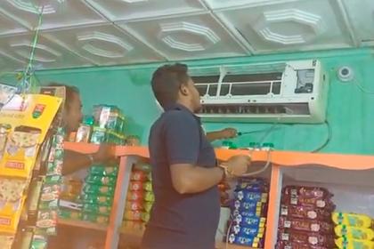 Ловкое укрощение смертоносной змеи в продуктовом магазине попало на видео