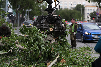 Стало известно о жертвах разрушительного урагана в российском регионе