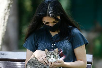Вирусолог прокомментировал первое в России заражение кошки коронавирусом