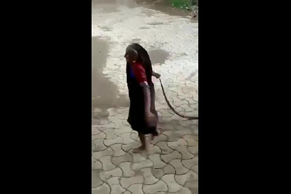 Бесстрашная старушка проволокла кобру за хвост по улице и попала на видео