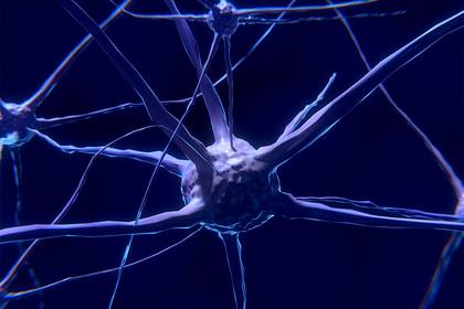Создан препарат против смертельной опухоли мозга