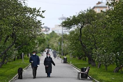 В Госдуме оценили продление самоизоляции в Москве