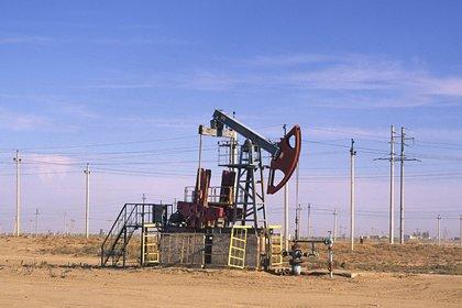Оценены запасы нефти и газа в России